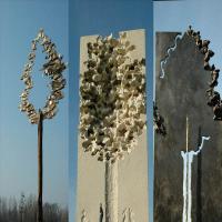Traces d'humanité mémoire d'arbres