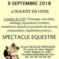 fête du cheval en pays d'Othe dans l'Aube (10)
