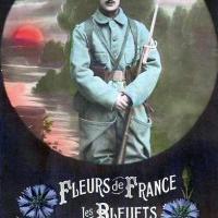 Fleurs de guerre 1918-2018 à Louviers