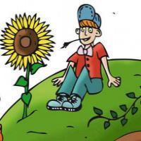Agriculture sans pesticide
