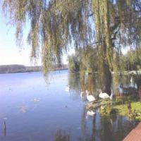 Arleux 15 kms Lecluse