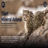 expo: Tibet, Minéral Animal